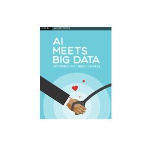 AI Meets Big Data