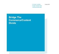Bridge The Commerce - Content Divide